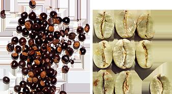 Organic guarana extract & plant caffeine