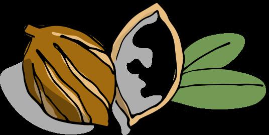 Moisture-Rich Body Lotion illustration