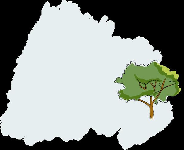 Moisture-Rich Body Lotion tree illustration